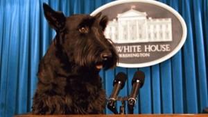 Former First Dog, Barney Bush
