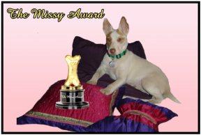the-missy-award